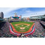 Fathead Behind Home Plate at Progressive Field Mural Fathead Wall Decal