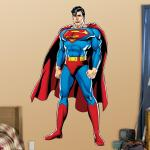 Hayneedle DC Superman Justice League Wall Decal